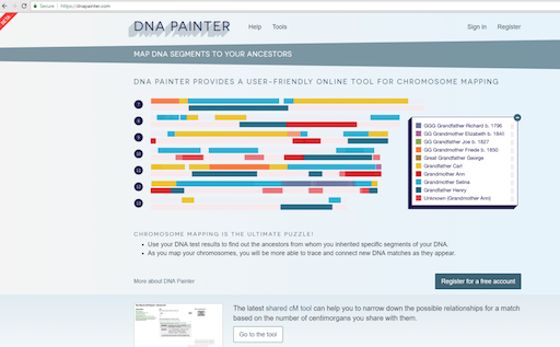 DNA Painter graphic